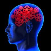 Sleep patterns, circadian rhythms, disease clock